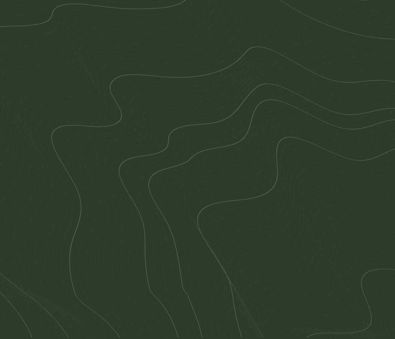 https://apartamentymarinaborki.pl/wp-content/uploads/2020/02/green-background-1280x1100.jpg